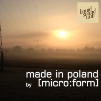Made in Poland – selected by [micro:form]