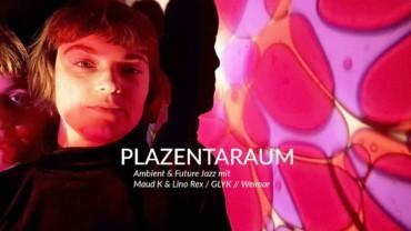 **Abgesagt ** 04.04.2020 – Plazentaraum