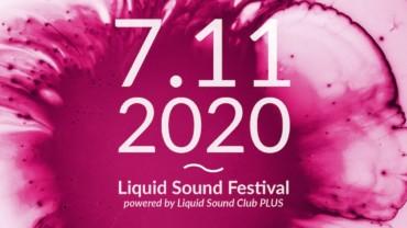 Liquid Sound Festival 2020 – Bad Sulza